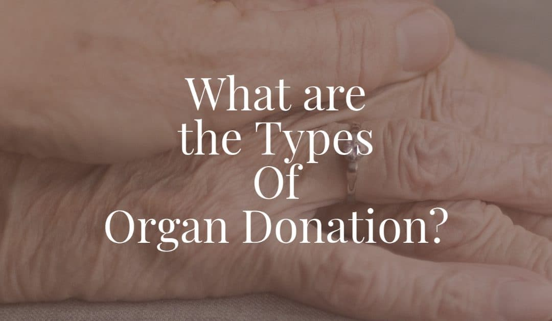 What are the Types Of Organ Donation?